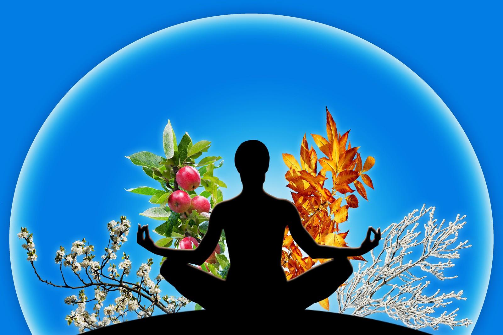 Согласно Аюрведа человек достигнет гармонии, когда сможет ощутить целостность своего организма, почувствует его частью природы и даже космоса.