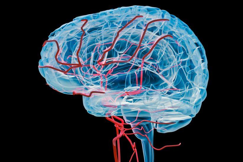 Отсутствие нормальной поддержки головы в процессе отдыха – одна из основных причин нарушенного кровообращения.