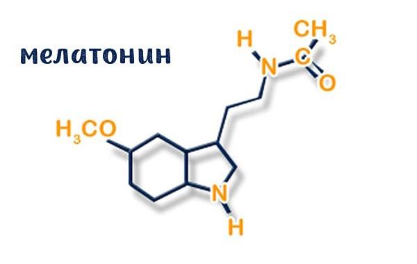 Мелатонин – гормон, открытый немногим более 60 лет назад. Основной функцией является регуляция циклов «сон – бодрствование».
