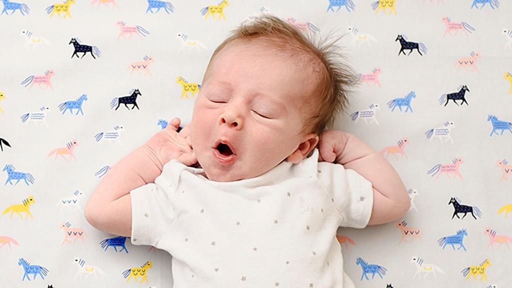 Имеет такое же значение для ребенка, как и ночной – продолжительный быстроволновый период позволяет усвоить информацию, полученную утром, разгрузить нервную систему.